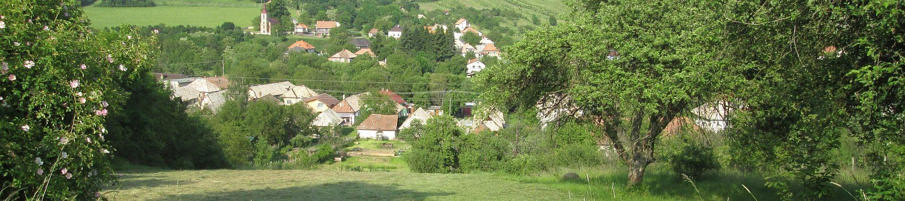Záhrada v kopci