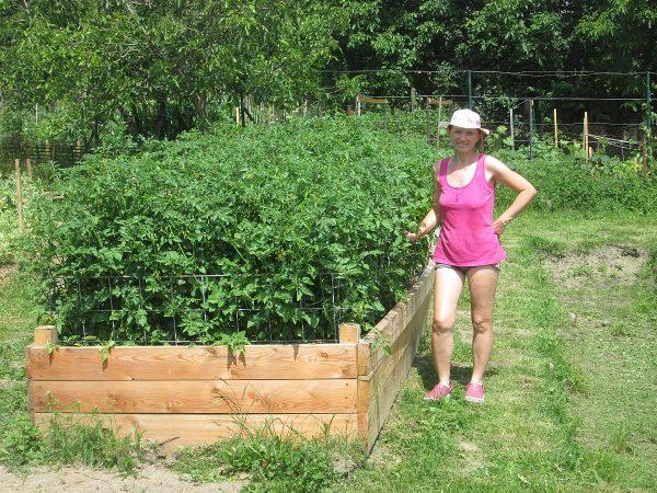 Ako rastie zelenina na vyvýšenom záhone