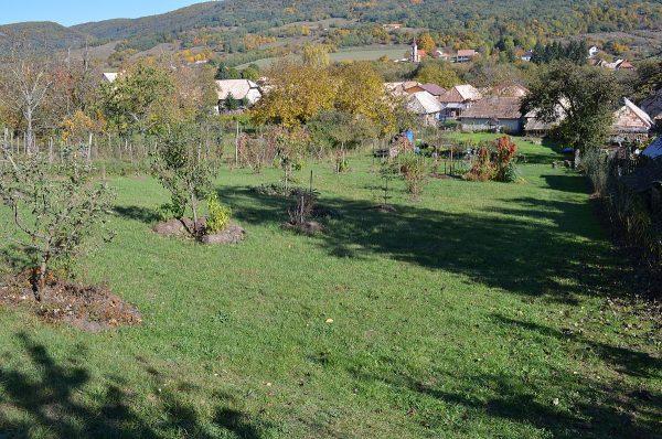 Jeseň v záhrade