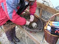pletenie košíka