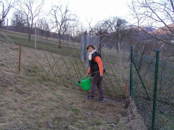 plot z vrby