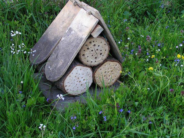 hotový domček pre včely