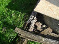 spráchnivená konštrukcia studne